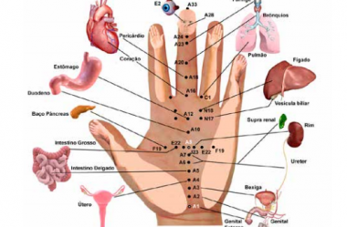 Acupuntura Coreana nas Mãos – Por Silvana Hechem Navarro