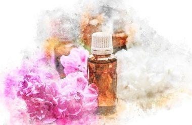 Florais de Bach – Por Camille Elenne Egídio